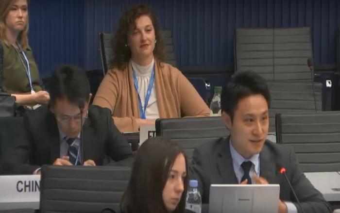 筆者がMAG日本委員として発言を行っている写真。