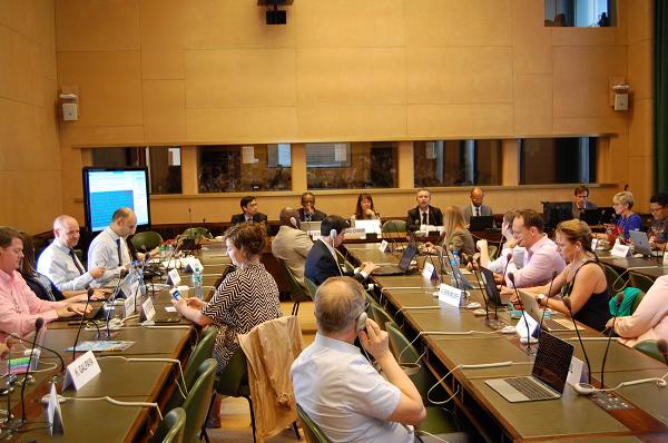 IGF/MAG(アイジーエフ・マグ)第二回会合の様子をとらえた写真。